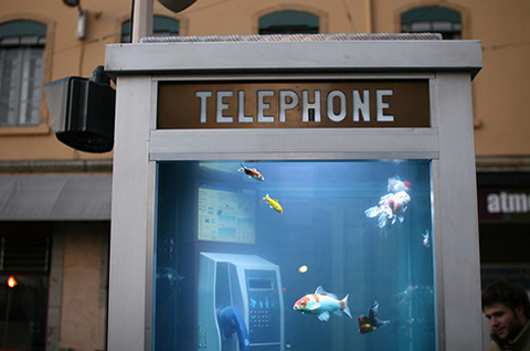 aquarium-phone-booth1.jpg