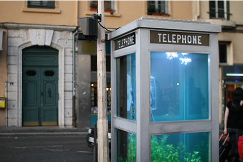 aquarium-phone-booth2.jpg