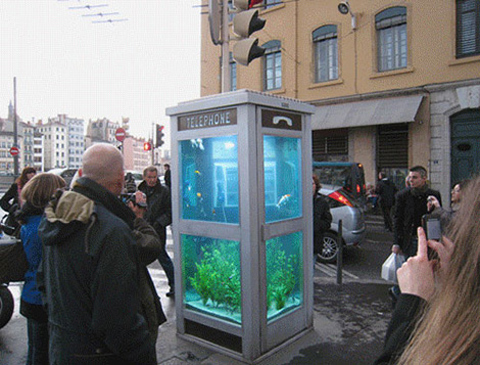 aquarium-phone-booth3.jpg