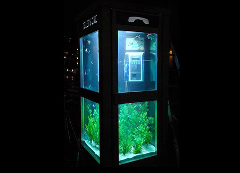 aquarium-phone-booth4.jpg