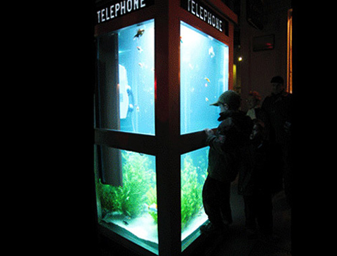 aquarium-phone-booth5.jpg