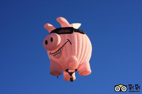 pig-hot-air-balloon.jpg