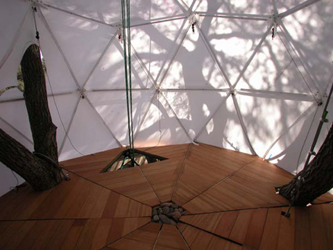 interior-natural-sustainability-treehouse.jpg
