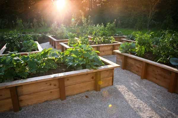 25-Lovely-DIY-Garden-Pathway-Ideas-17