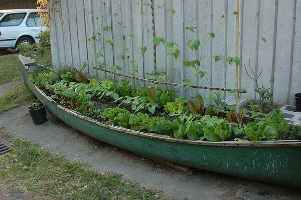 Garden-planter-from-old-canoe