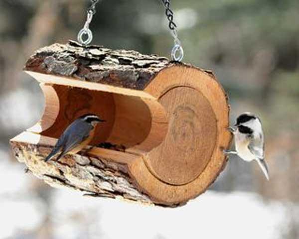 bird-feeder