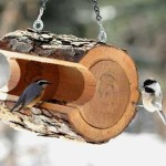 DIY Bird Feeder Log