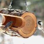 DIY Bird Feeder Log