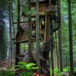 Top 20 Fantasy Treehouses Around The World