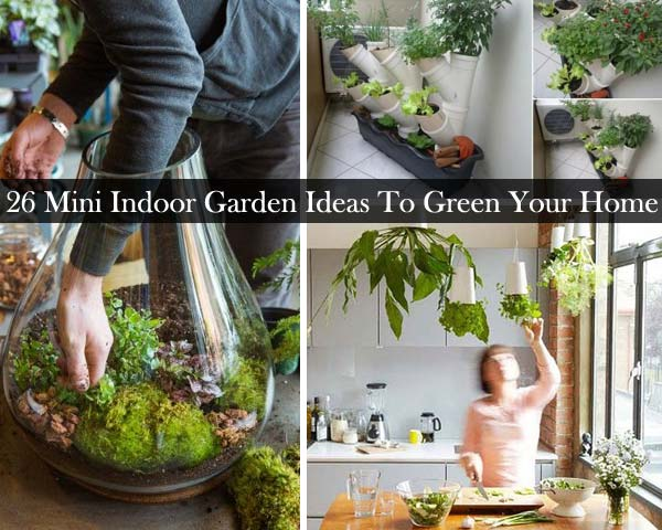 26 mini indoor garden ideas to green your home amazing for Indoor gardening videos