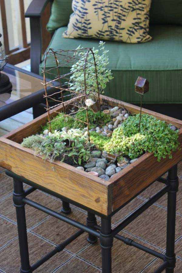indoor herb gardening on raised platforms.