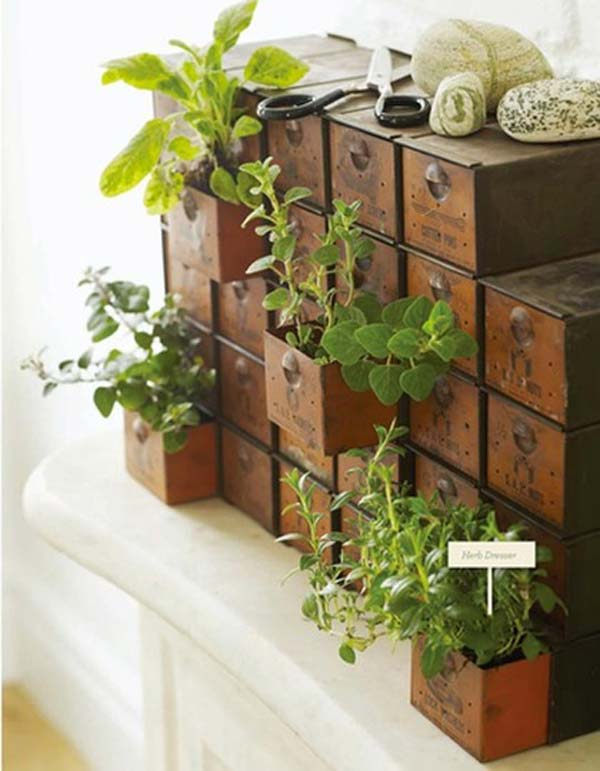 Beautiful Indoor Gardening Ideas Part - 7: Mini-Indoor-Gardening-14