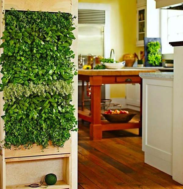 Mini-Indoor-Gardening-16