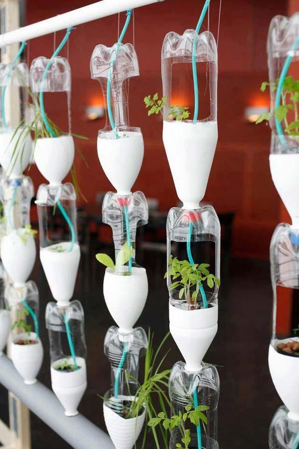 Mini-Indoor-Gardening-22