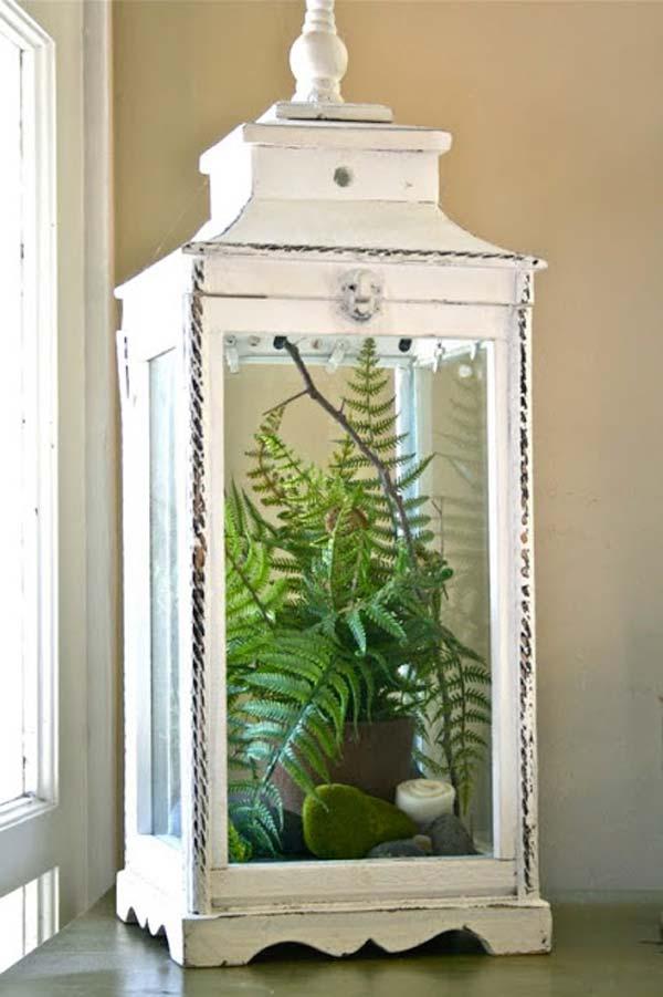 Mini-Indoor-Gardening-4