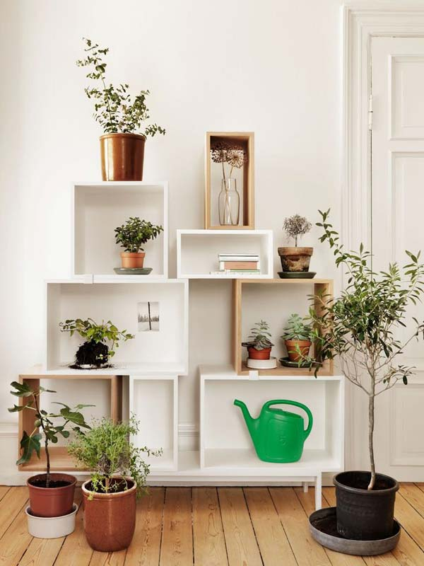 26 Mini Indoor Garden Ideas to Green Your Home - Amazing DIY ...