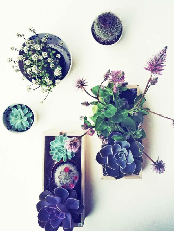 Mini-Indoor-Gardening-9