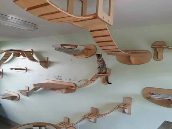 things-in-your-dream-house-26