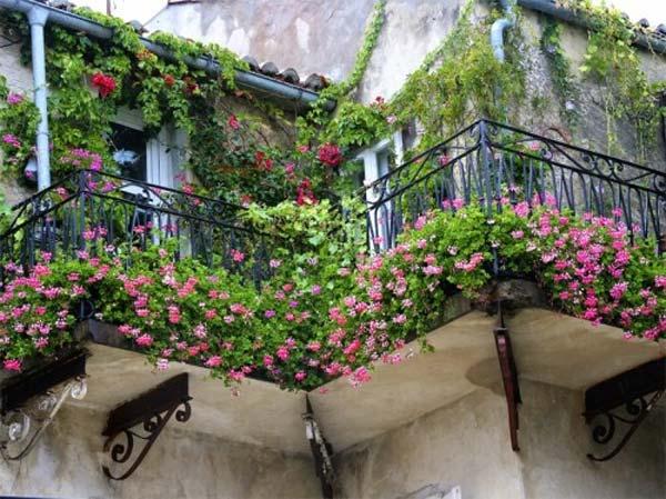 Small-Balcony-Garden-ideas-20