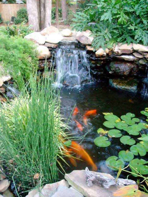 Waterfalls diy on pinterest backyard ponds water for Backyard ponds and water features