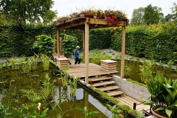 backyard-pond-water-garden-33