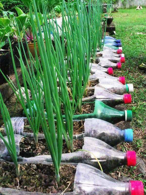 DIY-Plastic-Bottles-ideas-8