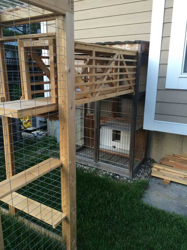Awesome Outdoor Cats Walkway And House Amazing Diy Interior Home Design