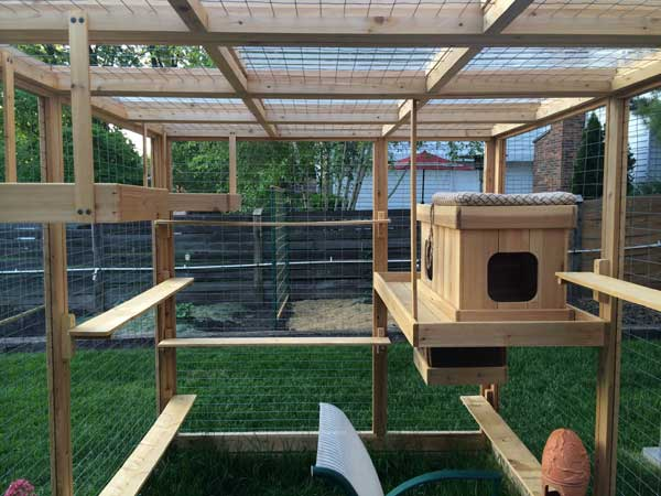 cat-walkway-and-house-4
