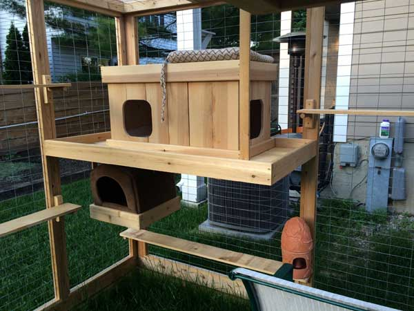 Awesome Outdoor Cats Walkway and House - Amazing DIY ...