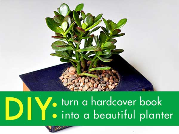 diy-recycled-planter-ideas-18