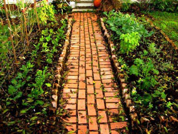garden-walkway-ideas-24