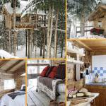 Rustic Tree Wood Cabin In Alps