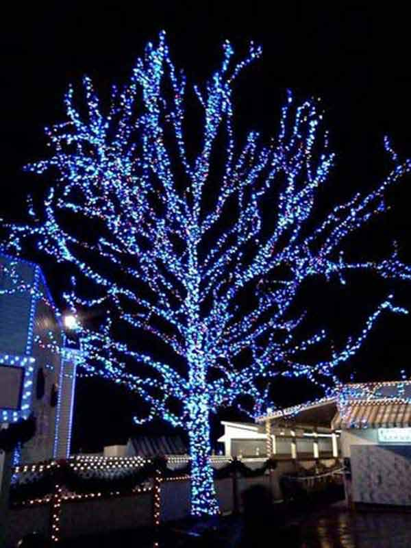 Outdoor-Christmas-Lighting-Decorations-42