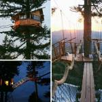 The Most Epic Treehouse with a Skate Bowl and a Hot Tub