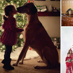 38 Of The Cutest and Most Fun Family Photo Christmas Card Ideas