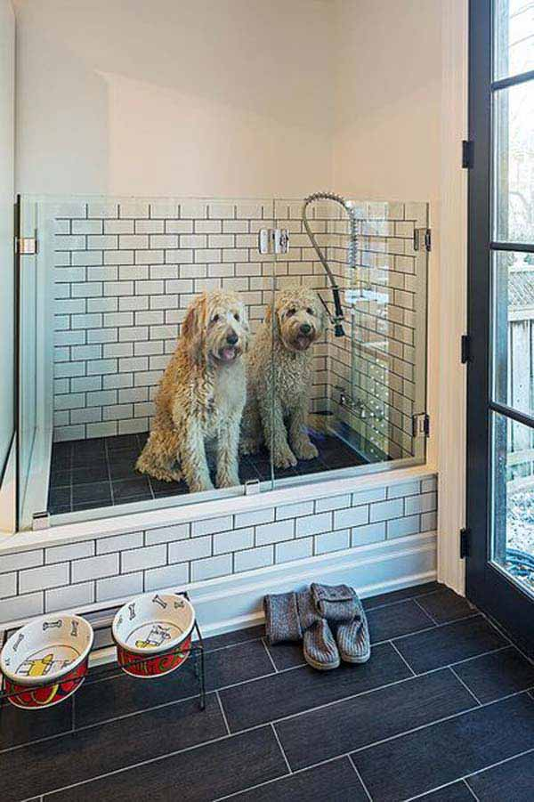 pet-bathroom-ideas-woohome-15