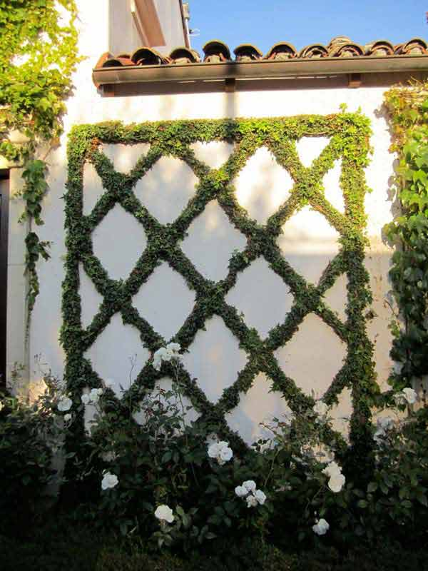 Top 23 Surprising DIY Ideas To Decorate Your Garden Fence ... on Vine Decor Ideas  id=30018