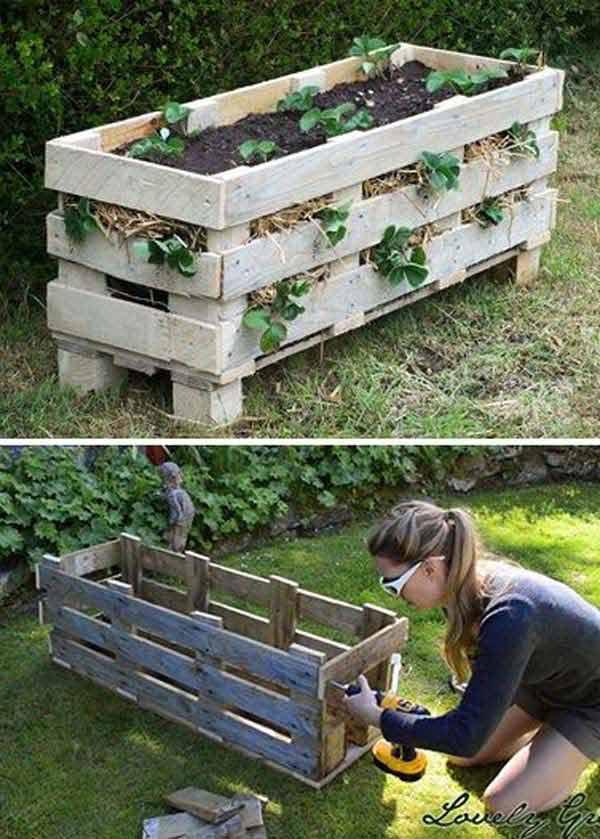 gardening-tips-woohome-1