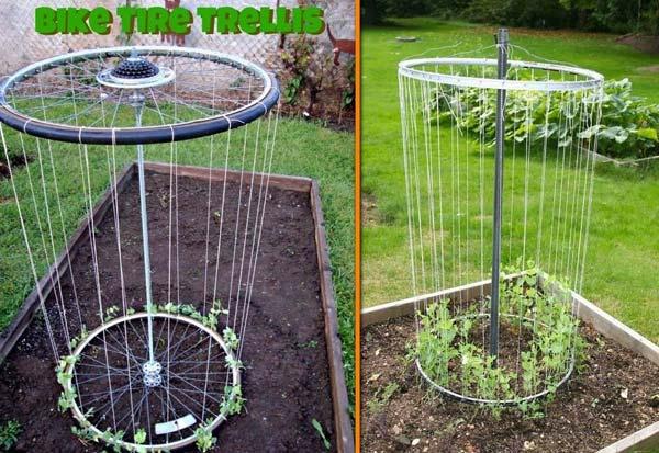 gardening-tips-woohome-11