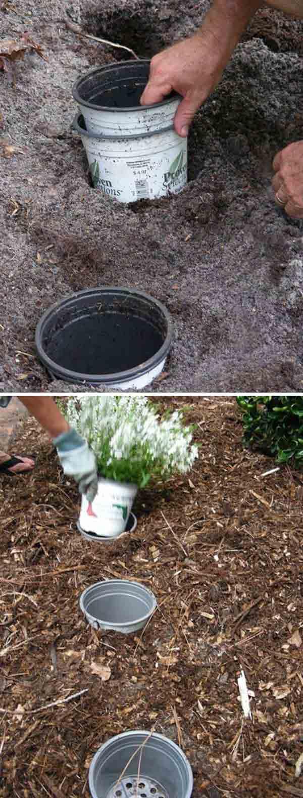 gardening-tips-woohome-4