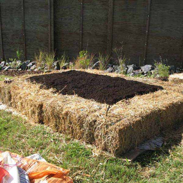 garden bed edging ideas woohome 16