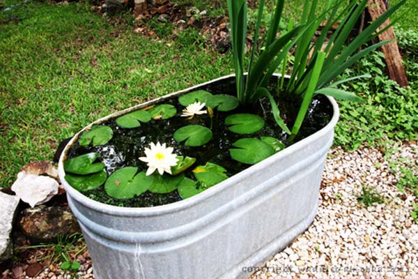 21 fascinating low budget diy mini ponds in a pot for Easy backyard pond