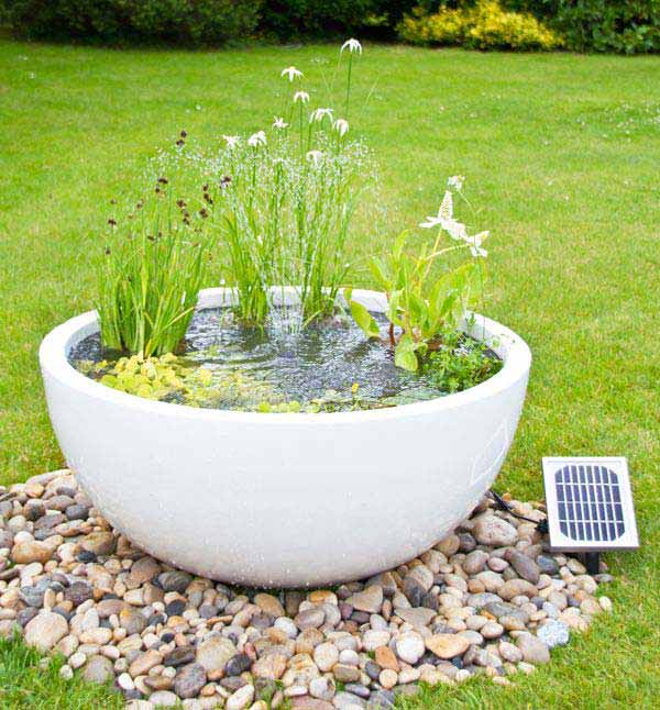 21 fascinating low budget diy mini ponds in a pot. Black Bedroom Furniture Sets. Home Design Ideas