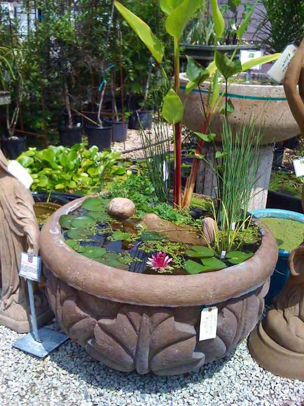 21 fascinating low budget diy mini ponds in a pot for Homemade pond ideas