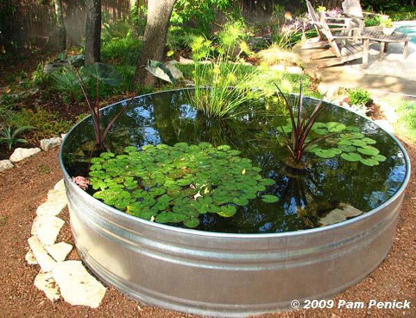 21 fascinating low budget diy mini ponds in a pot for Backyard pond plants and fish