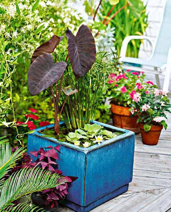 mini-pond-in-a-pot-woohome-5