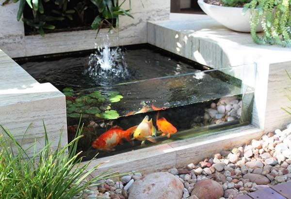 22 small garden or backyard aquarium ideas will blow your for Outdoor fish tank filter