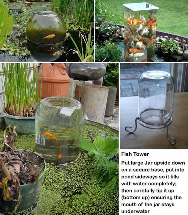 22 small garden or backyard aquarium ideas will blow your for Goldfish pond ideas