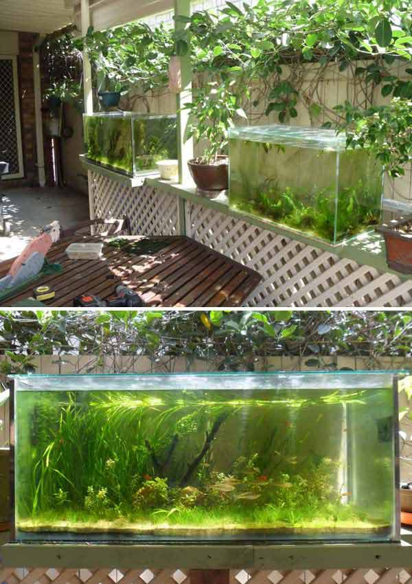 Wow 22 small garden or backyard aquarium ideas will blow for Garden table fish pond