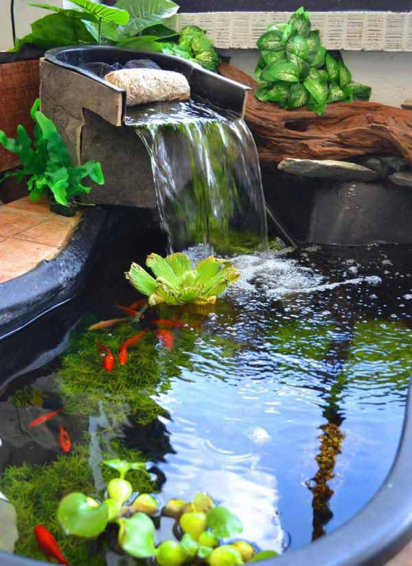 22 small garden or backyard aquarium ideas will blow your for Backyard pond plants and fish